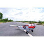 RANS S 20 Raven - 80 inches - 20cc