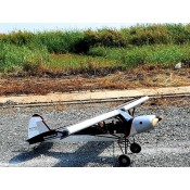 NEW July 2020 Shock Cub 38-50cc-102in span Silver w/wingbags by Seagull Models